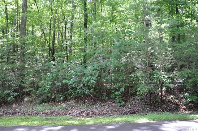000 Duck Pond Lane #47, Columbus, NC 28722 (#3295657) :: Exit Mountain Realty