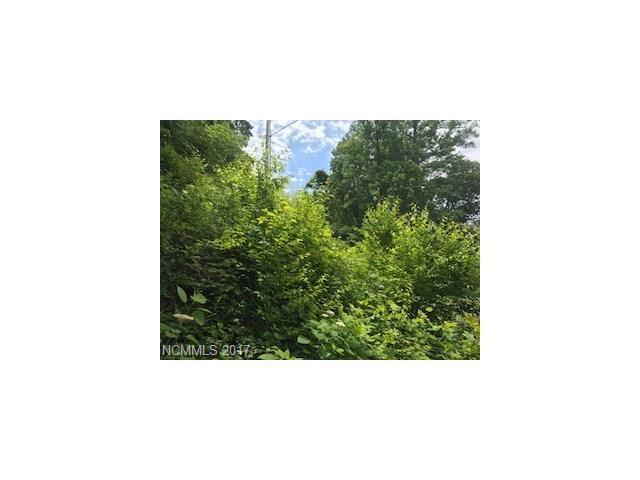 000 Merrie Way #62, Waynesville, NC 28786 (#3295806) :: Robert Greene Real Estate, Inc.