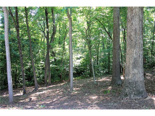 Lot 17 Ridgebrook Drive, Mooresville, NC 28117 (#3295843) :: The Andy Bovender Team