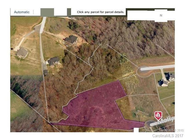 Lot 25 Molly Pop Lane Lot 25, Monroe, NC 28112 (#3296096) :: Team Southline