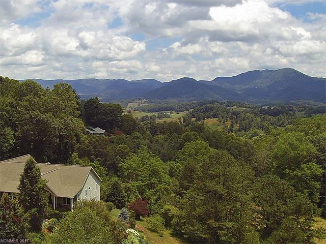 00 Coyote Hollow Road, Waynesville, NC 28785 (#3296491) :: Exit Mountain Realty