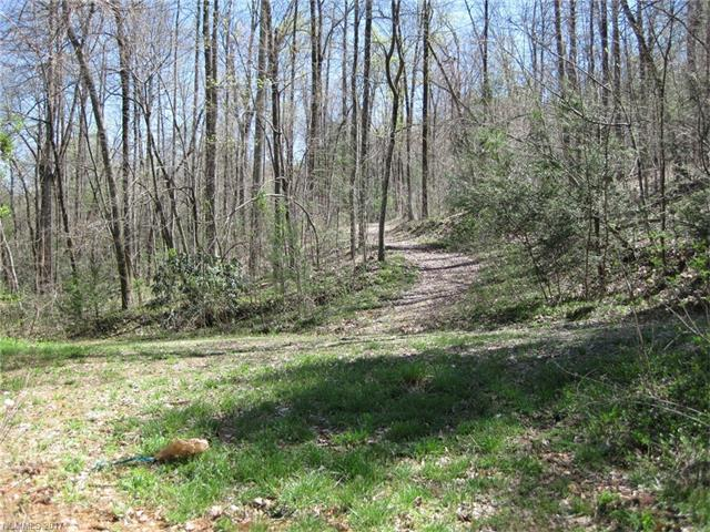 LOT 79 Haven Drive, Saluda, NC 28773 (#3296972) :: MartinGroup Properties