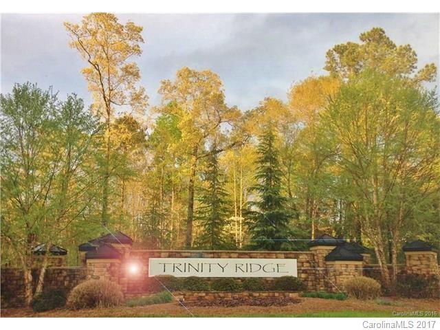 1093 Trinity Ridge Parkway, Fort Mill, SC 29715 (#3297067) :: Miller Realty Group
