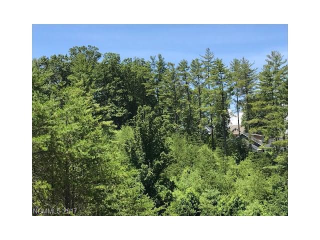 57 Nader Avenue #21, Weaverville, NC 28787 (#3298615) :: Stephen Cooley Real Estate Group