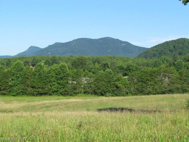 00 Fox Mountain Road, Columbus, NC 28722 (#3299593) :: Cloninger Properties