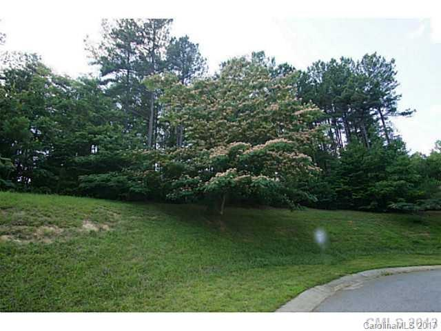 183 Atlantic Way, Mooresville, NC 28117 (#3299639) :: Pridemore Properties