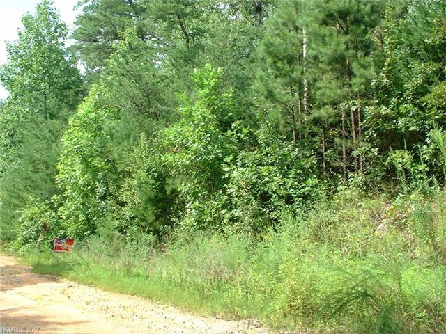 00 Horse Creek Road #25, Mill Spring, NC 28756 (#3300575) :: The Andy Bovender Team