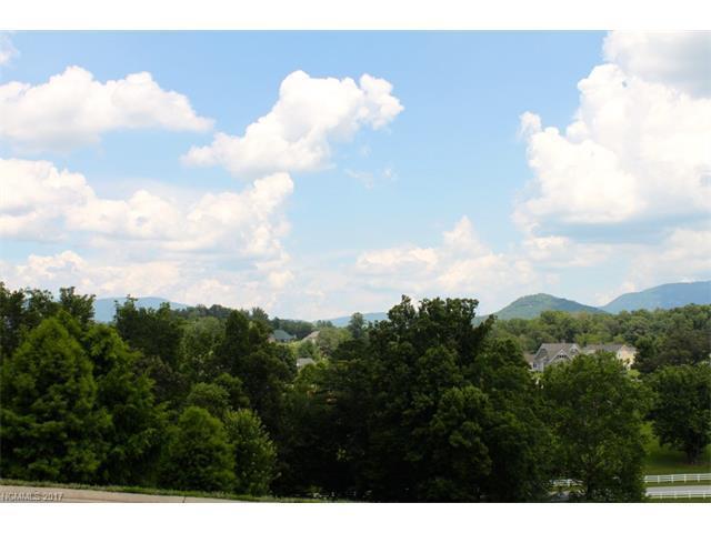 65 Bradford Vista, Fletcher, NC 28732 (#3300832) :: Exit Mountain Realty