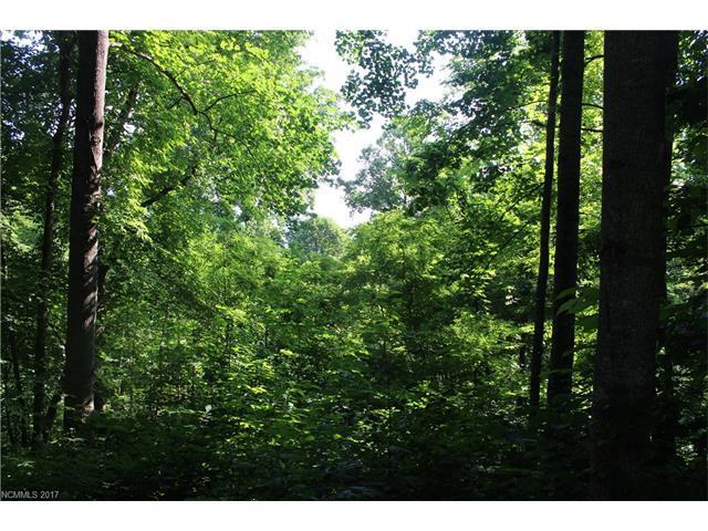 00 Appaloosa Trail #29, Waynesville, NC 28785 (#3301097) :: High Performance Real Estate Advisors