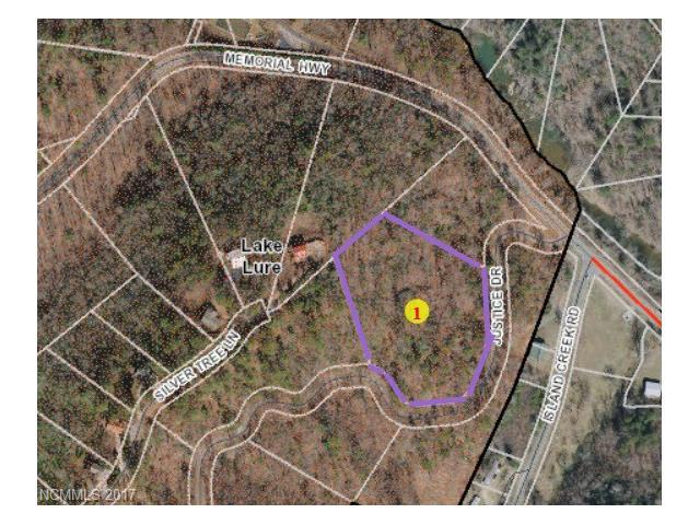 Lot 16 Justice Drive, Lake Lure, NC 28746 (#3301611) :: Exit Mountain Realty