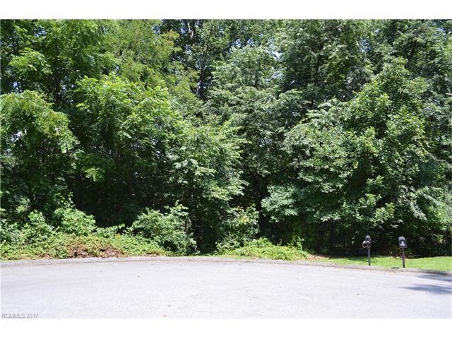 Lots 11&13 Aldersgate Road 11&13, Waynesville, NC 28786 (#3302856) :: Rinehart Realty