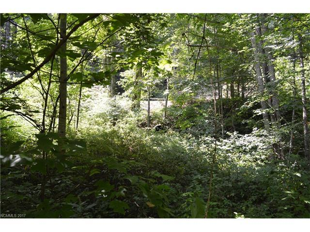 Lot 9 Creekside Drive Lot 9, Maggie Valley, NC 28751 (#3302893) :: Puffer Properties