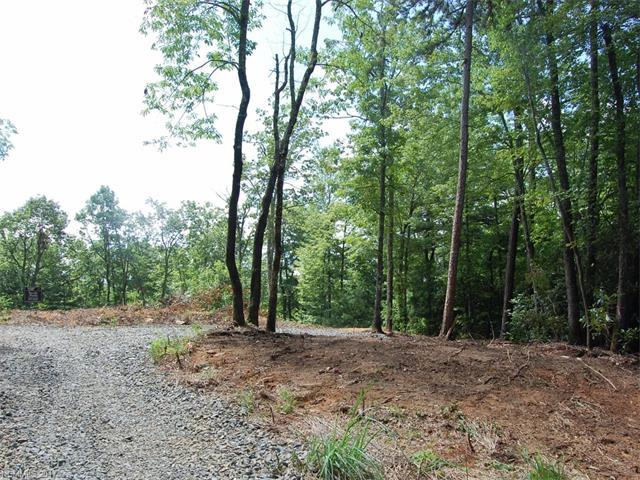 75 Dogwood Court, Penrose, NC 28774 (#3303018) :: The Premier Team at RE/MAX Executive Realty