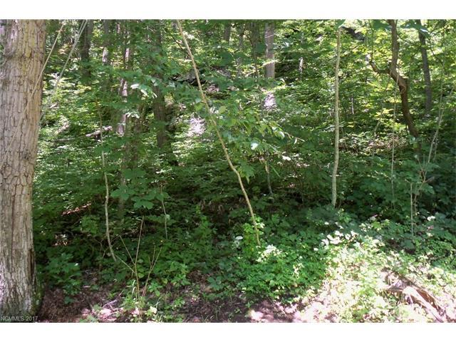 Lot 25 Countryside Drive, Waynesville, NC 28785 (#3303094) :: IDEAL Realty