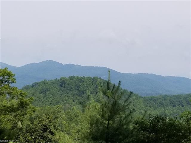 45 Mount Amy Road #27, Black Mountain, NC 28711 (#3303365) :: Exit Mountain Realty