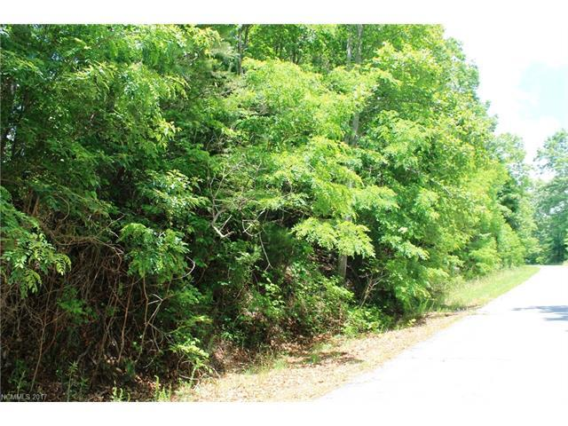 LOT #9 Rambling Trail #9, Hendersonville, NC 28739 (#3304360) :: Exit Mountain Realty
