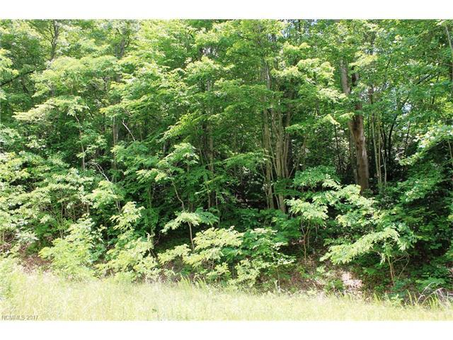 LOT #32 Rambling Trail #32, Hendersonville, NC 28739 (#3304495) :: Exit Mountain Realty
