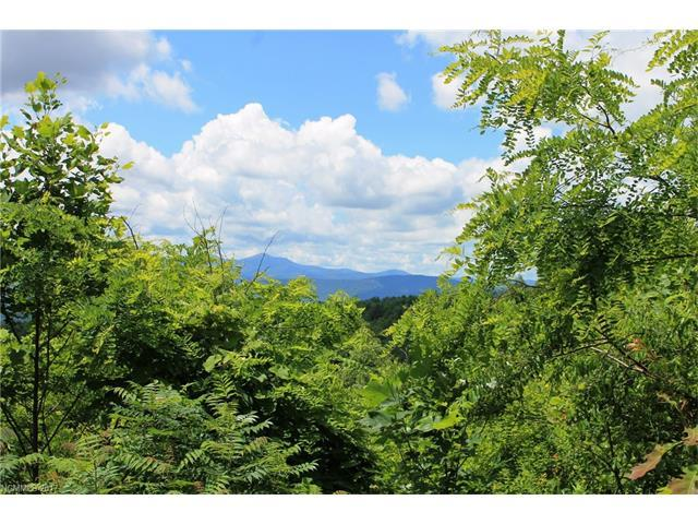 LOT # 27 Coopers Drive, Hendersonville, NC 28739 (#3304506) :: Exit Mountain Realty