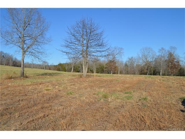45 Stone Cottage Lane # 10, Landrum, SC 29356 (#3305101) :: MECA Realty, LLC