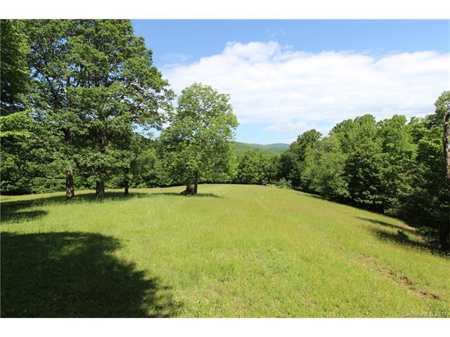 TBD Howards Creek Road, Boone, NC 28607 (#3305286) :: Pridemore Properties