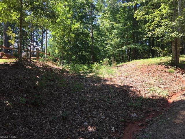 LOT 22 Bobcat Trail, Saluda, NC 28773 (#3305979) :: Puffer Properties