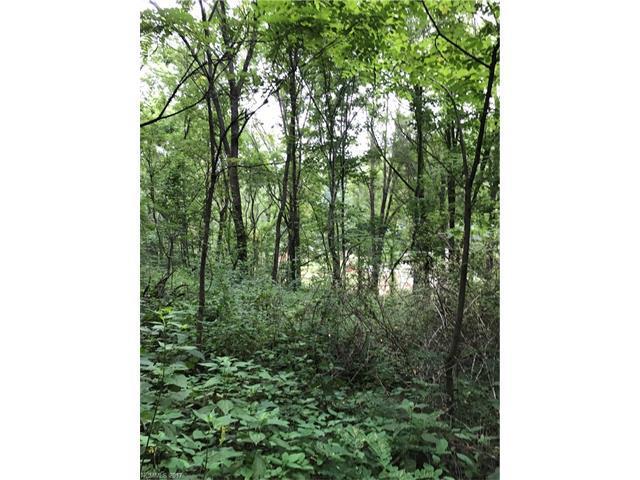 00000 Alex Trail #4, Waynesville, NC 28786 (#3306619) :: LePage Johnson Realty Group, LLC