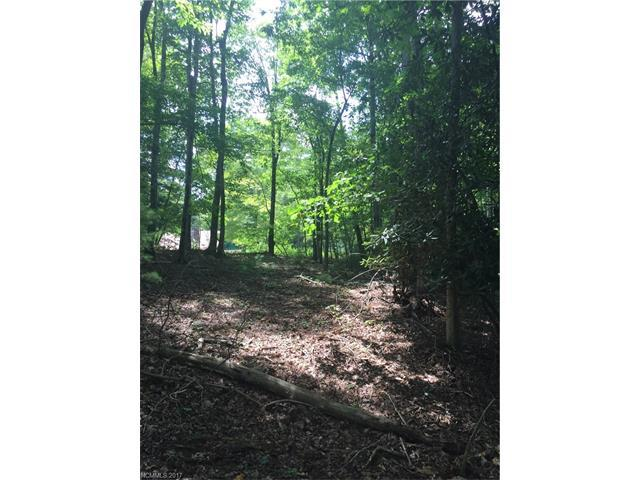 LOT B Echo Lane, Saluda, NC 28773 (#3308001) :: LePage Johnson Realty Group, LLC