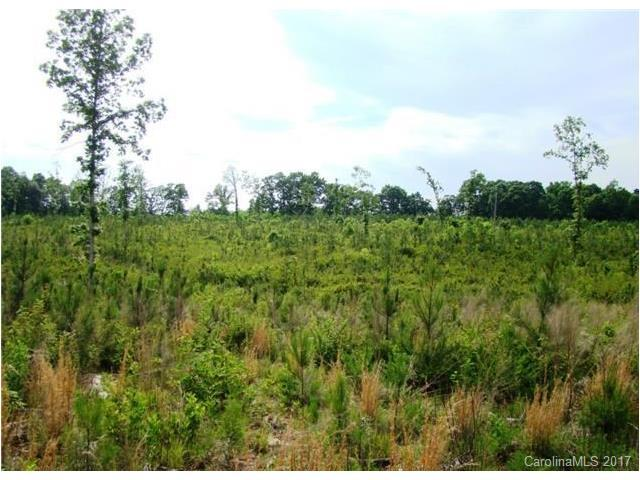 Approx 11.03 acres Keever Dairy Farm Road, Iron Station, NC 28080 (#3308202) :: Cloninger Properties