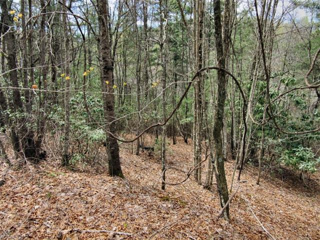 L #20 Still Branch Road, Brevard, NC 28712 (#3308589) :: Puffer Properties