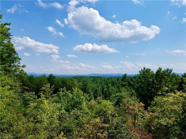 9040 Shortoff View Terrace #45, Nebo, NC 28761 (#3308879) :: Rinehart Realty