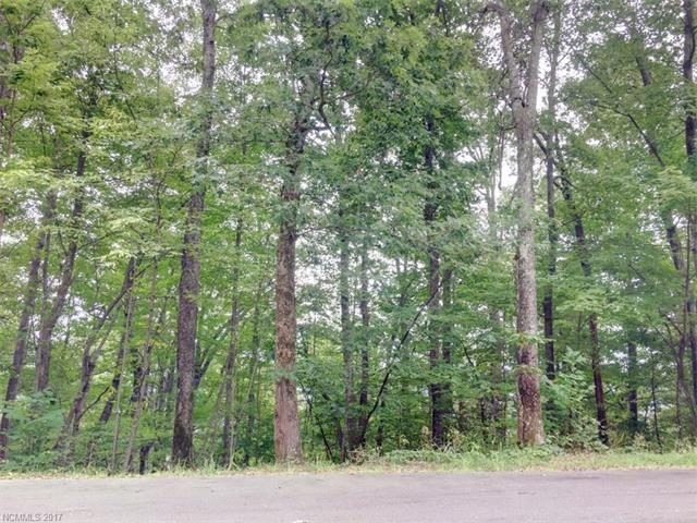 169 Bobcat Lair Drive #9, Mills River, NC 28759 (#3309400) :: Stephen Cooley Real Estate Group
