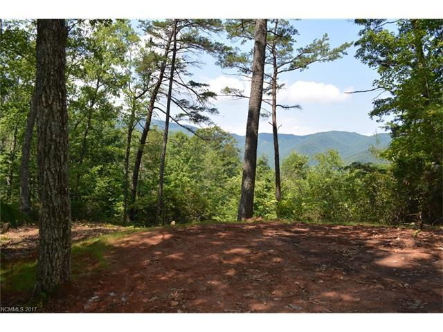 000 Blue Vista Road Lot 1, Canton, NC 28716 (#3310562) :: The Ramsey Group