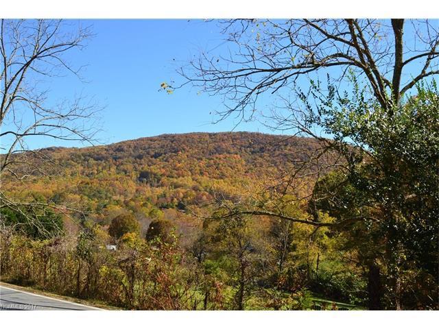 999999 Autumn Trail Lane #2, Asheville, NC 28803 (#3311912) :: Exit Mountain Realty