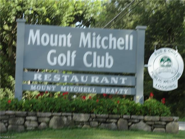 344 Fairway Loop, Burnsville, NC 28714 (#3311925) :: Mossy Oak Properties Land and Luxury