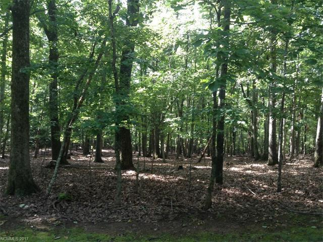 LOT#171 Mountain Laurel Drive, Columbus, NC 28722 (#3312724) :: Rinehart Realty