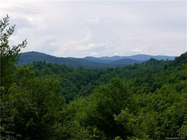00 Timber Rock Drive #560, Lenoir, NC 28645 (#3313187) :: Puma & Associates Realty Inc.