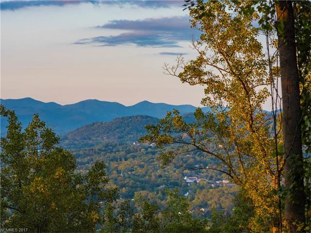 12 Tranquil Forest Way #2, Asheville, NC 28804 (#3313895) :: Caulder Realty and Land Co.