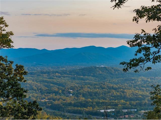 237 Serenity Ridge Trail #29, Asheville, NC 28804 (#3314037) :: The Elite Group