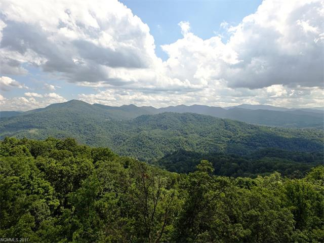 631 Blake Drive, Canton, NC 28716 (#3314848) :: Exit Mountain Realty