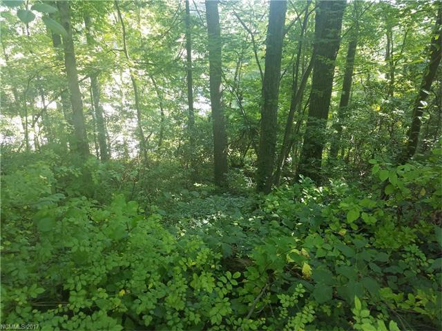 Lot 461/462 Upper Ridgewood Boulevard, Hendersonville, NC 28791 (#3315318) :: The Ramsey Group
