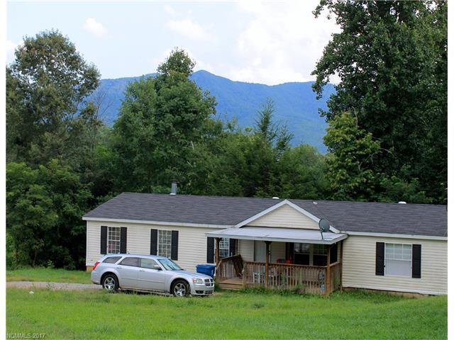 115,119,120,121,123, Carver Avenue, Black Mountain, NC 28711 (#3315471) :: Exit Realty Vistas