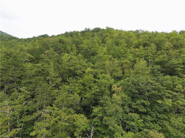 00 Bent Tree Road #00, Maggie Valley, NC 28751 (#3315650) :: Puffer Properties