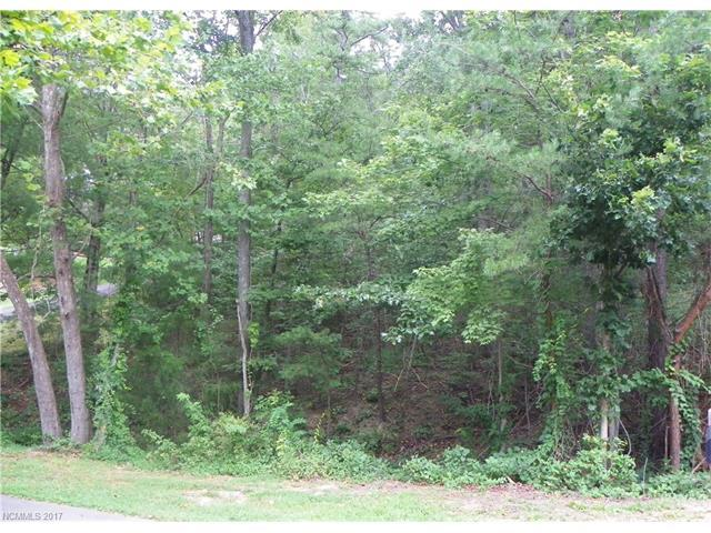 2 High Meadow Cove 119 (Lot), Weaverville, NC 28787 (#3316059) :: Miller Realty Group