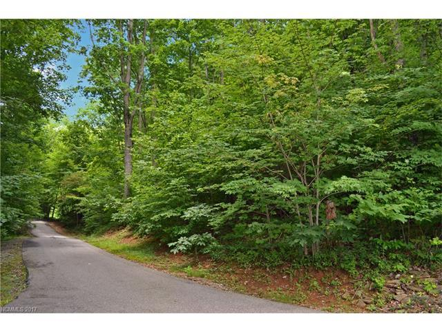 Lot 8 Van Tassel Drive #8, Waynesville, NC 28786 (#3316964) :: LePage Johnson Realty Group, LLC