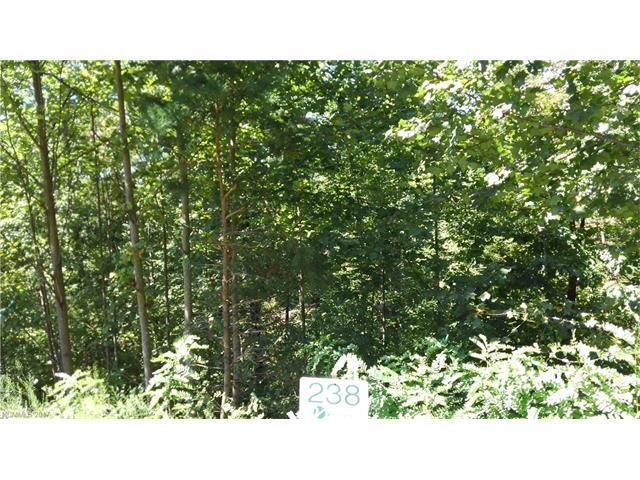 0 Rock Ledge Drive #238, Lake Lure, NC 28746 (#3317077) :: Stephen Cooley Real Estate Group