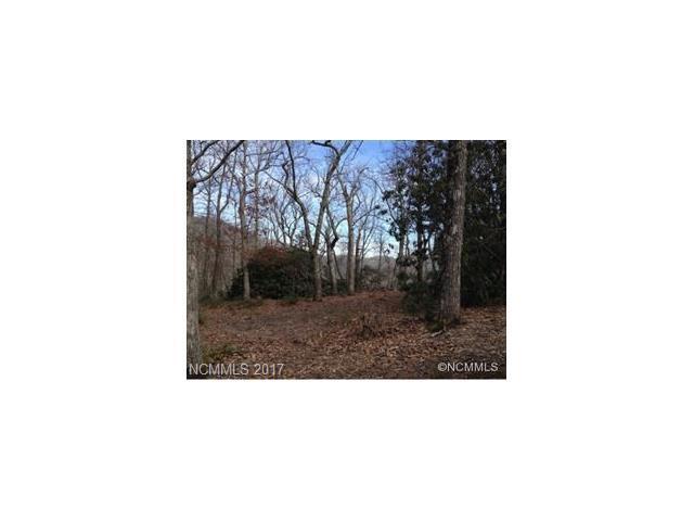 206 Davey Crockett Road #5, Fairview, NC 28730 (#3318174) :: Puffer Properties