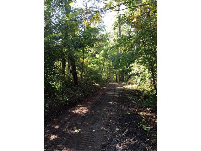 TBD Davey Crockett Road 5 & 6, Fairview, NC 28730 (#3318858) :: Puffer Properties