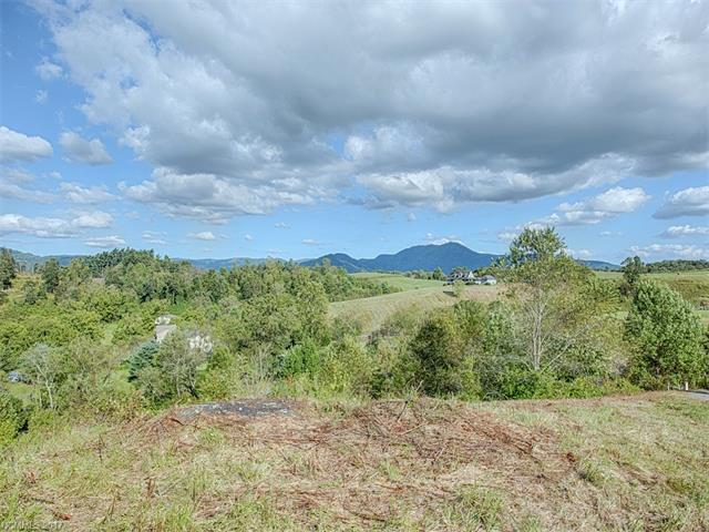 Lot 14 Coyote Hollow Road #14, Waynesville, NC 28785 (#3318921) :: Puffer Properties