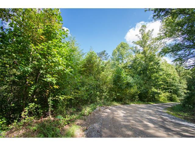 TBD Falls Trail #2, Canton, NC 28716 (#3319548) :: Exit Mountain Realty