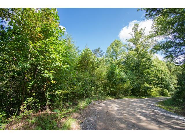TBD Falls Trail #2, Canton, NC 28716 (#3319548) :: Rinehart Realty